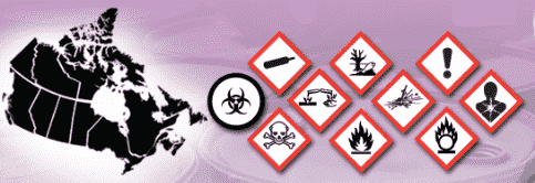 WHMIS Symbols 2020 with meanings (Pictograms) [New Updated]